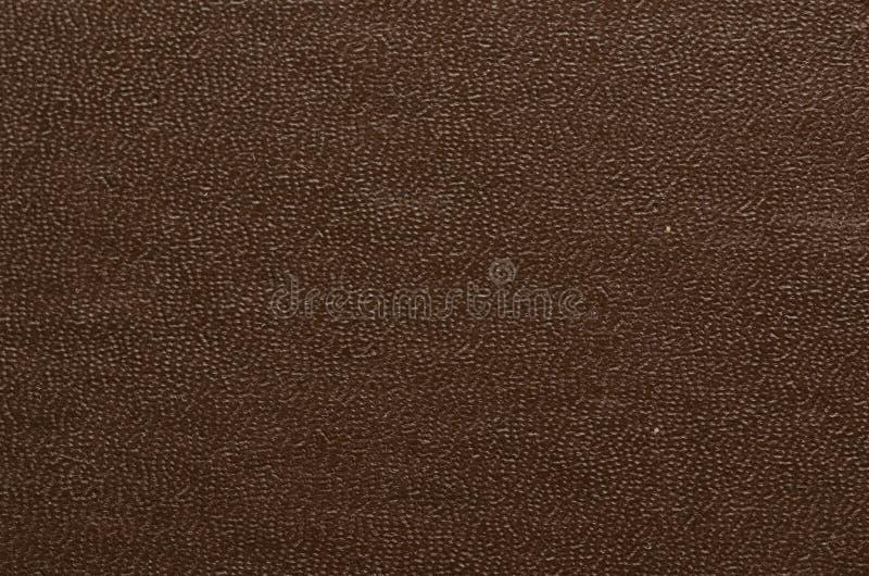 Текстура крупного плана кожи стоковые фотографии rf