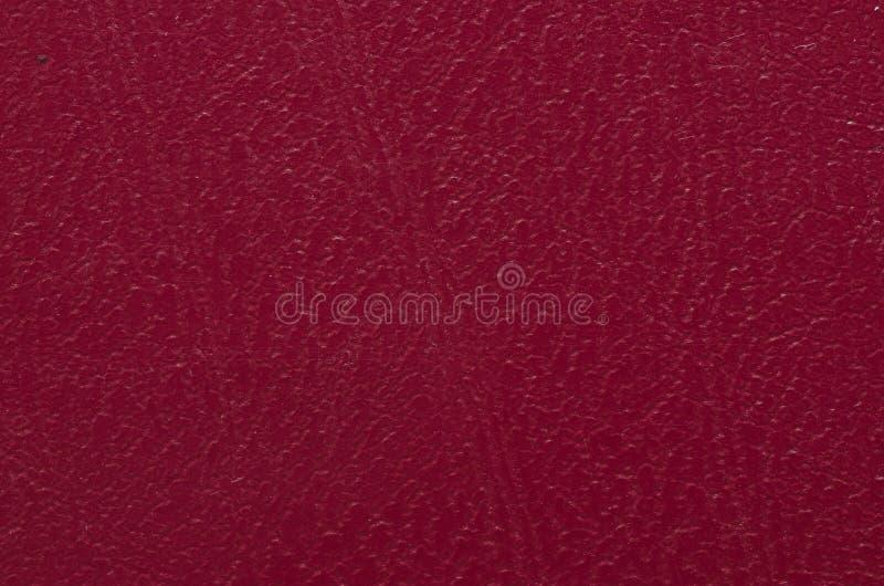 Текстура крупного плана кожи стоковые изображения rf