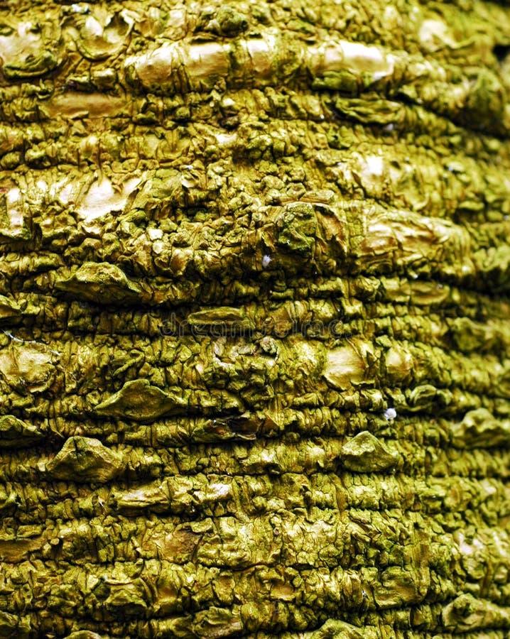 текстура ладони стоковое фото
