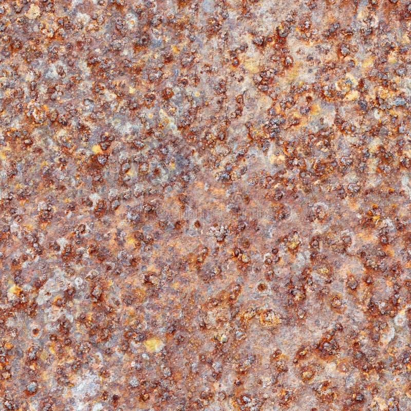 текстура листа утюга ржавая безшовная стоковое изображение rf