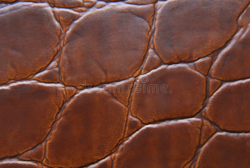 Текстура макроса кожи Брайна стоковое фото rf