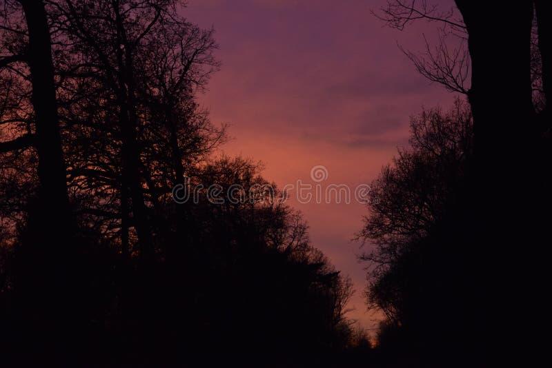текстура неба небес вечера стоковая фотография