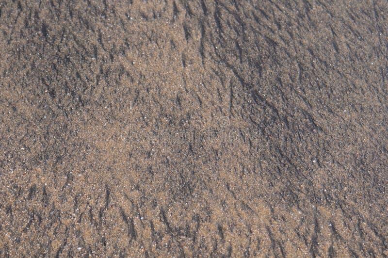 текстура отработанной формовочной смеси стоковые изображения rf