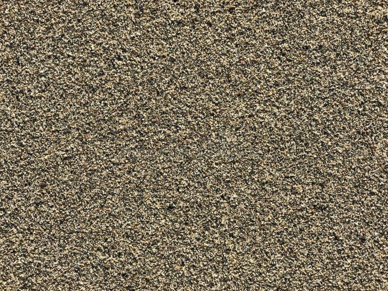 Текстура песка на пляже стоковое фото rf