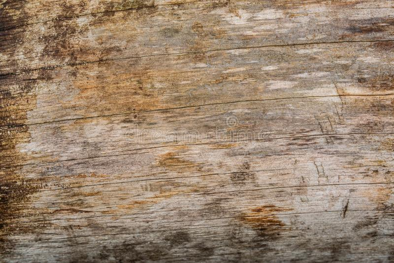 Текстура планок Wethered деревянная с поцарапанной краской стоковое изображение rf