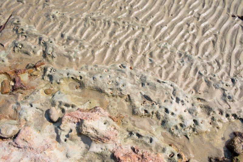 Текстура пляжа песка показывая картину волны и риф трясут стоковая фотография