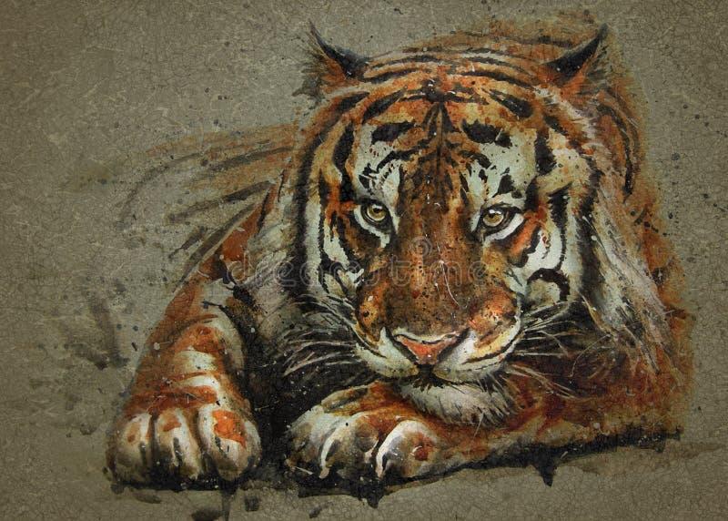 Текстура предпосылки животных акварели хищника тигра крася иллюстрация штока