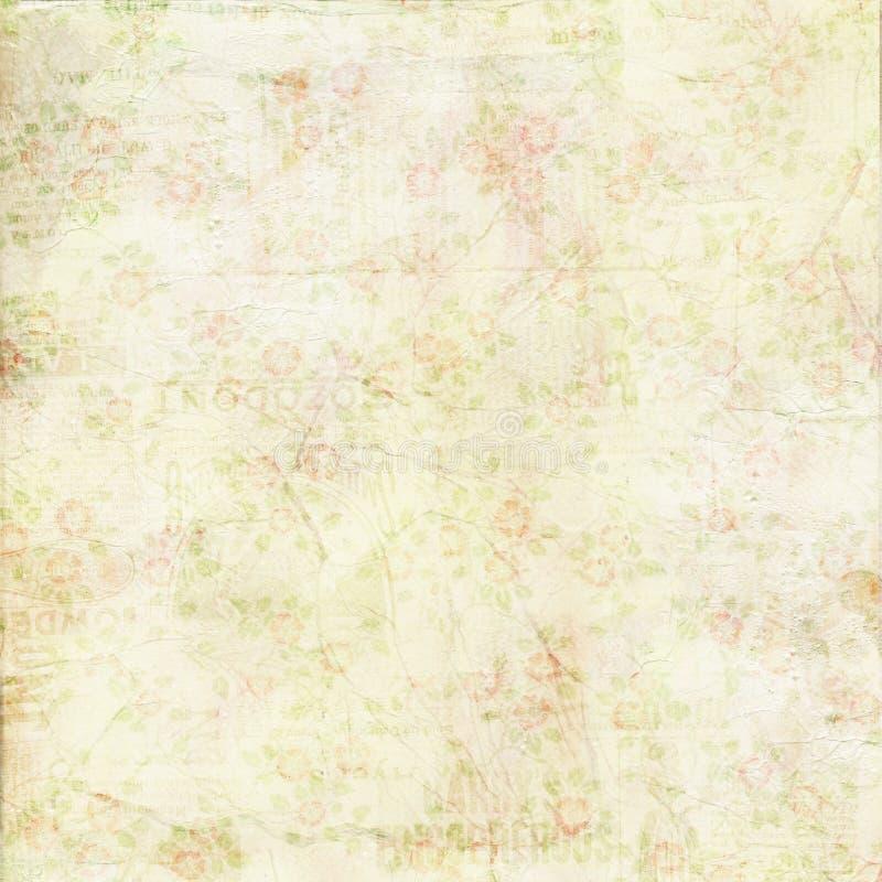 Текстура предпосылки затрапезного шикарного зеленого цвета сбора винограда розовая стоковое изображение rf