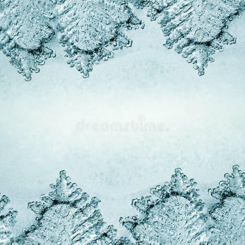 Текстура предпосылки льда стоковое изображение