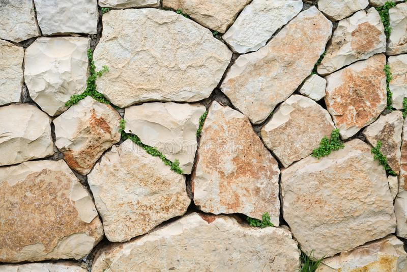 Текстура предпосылки поверхности камня известняка с зеленой травой стоковое изображение