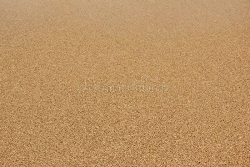 Текстура предпосылки грубозернистого песка стоковое изображение