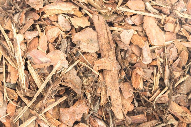 Текстура предпосылки обломока расшивы сосны стоковая фотография rf