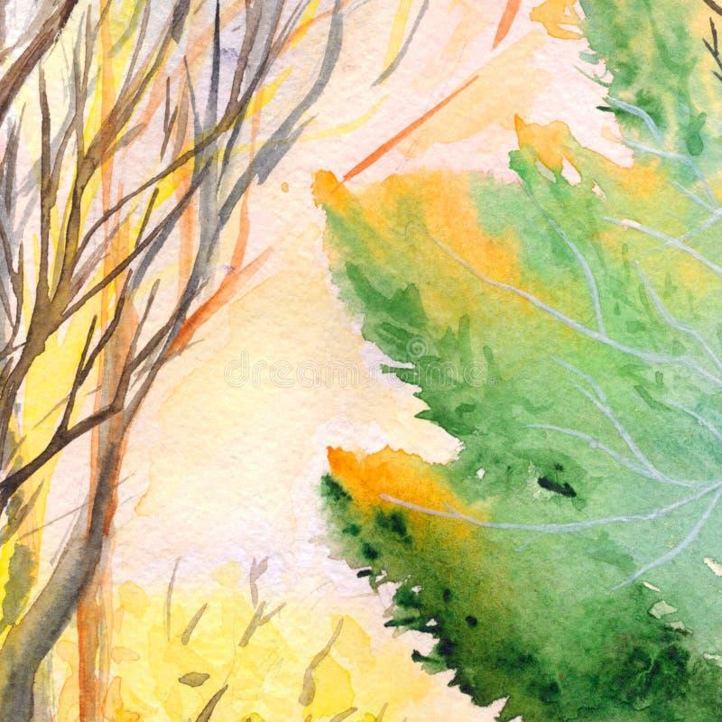Текстура предпосылки парка дерева природы осени акварели деревянная бесплатная иллюстрация
