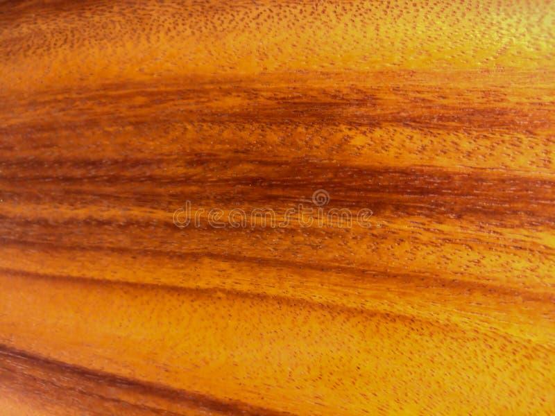 Текстура природы старая деревянная стоковые изображения