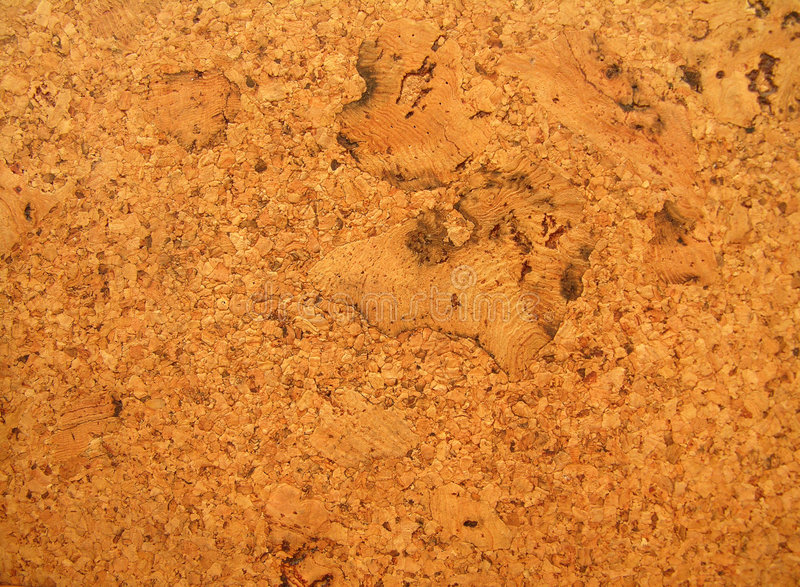 текстура пробочки доски Стоковое фото RF