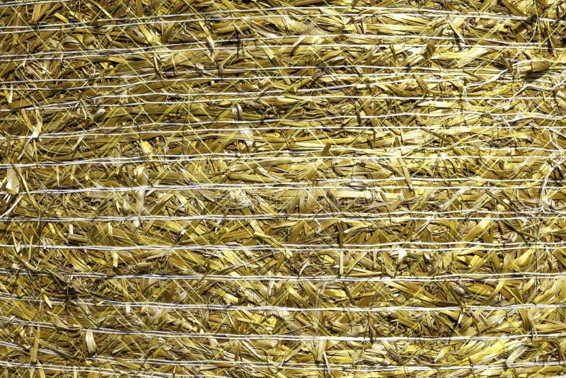 Текстура сена стоковые фото