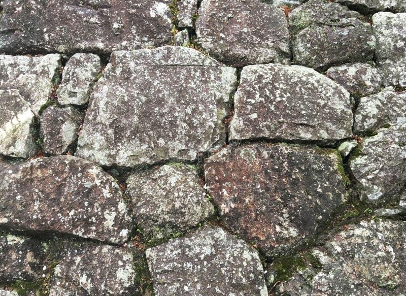 Текстура старой каменной стены покрыла зеленый мох стоковое изображение rf