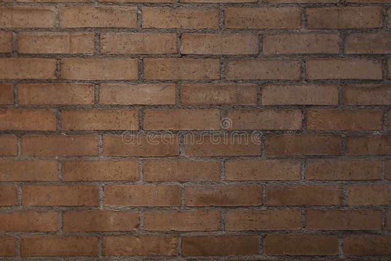 Текстура стены кирпичей стоковое фото