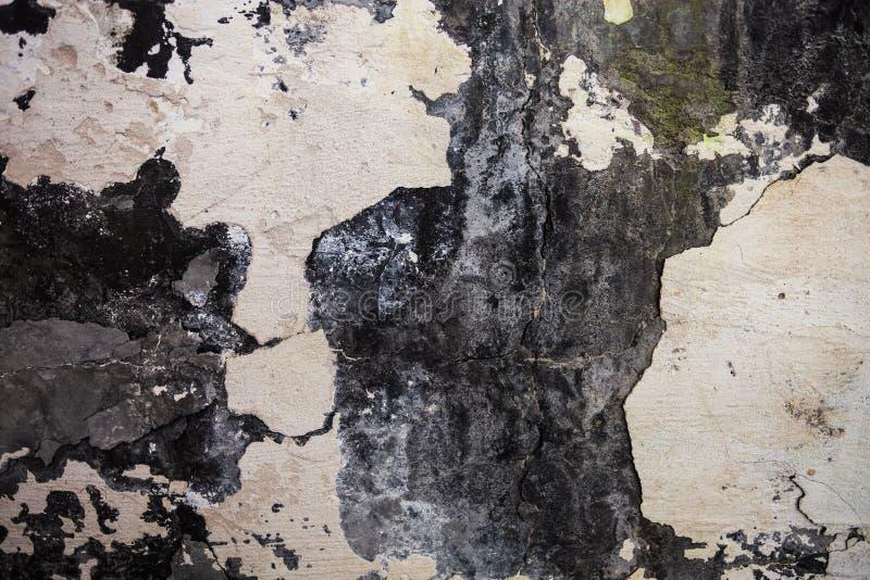 Текстура стены с треснутыми гипсолитом и побелкой стоковая фотография