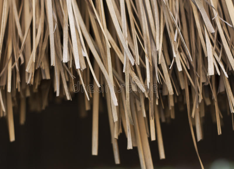 текстура сторновки предпосылки близкая вверх Текстура фото соломы стоковая фотография rf