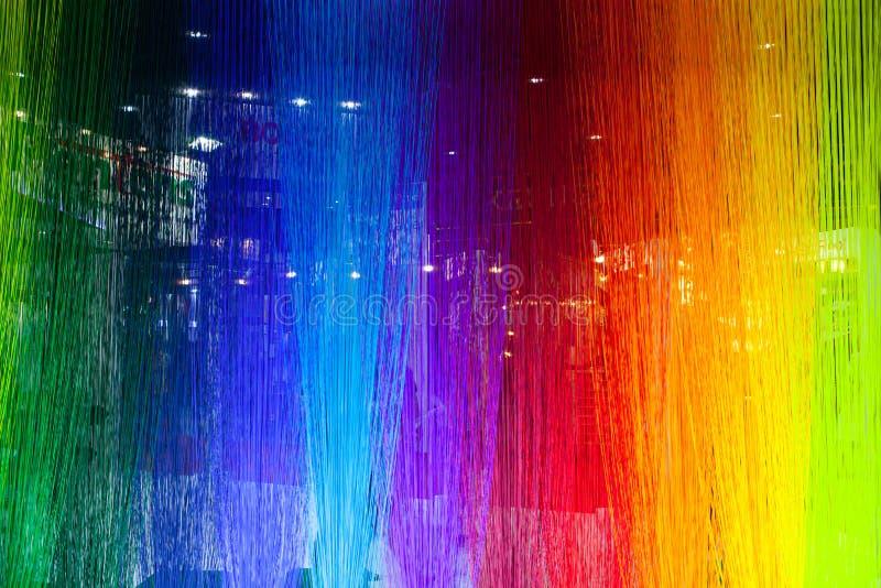 Текстура сухих тростников Красочные тростники стоковые фото