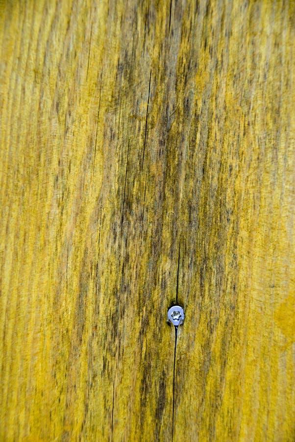 текстура стоковые фото