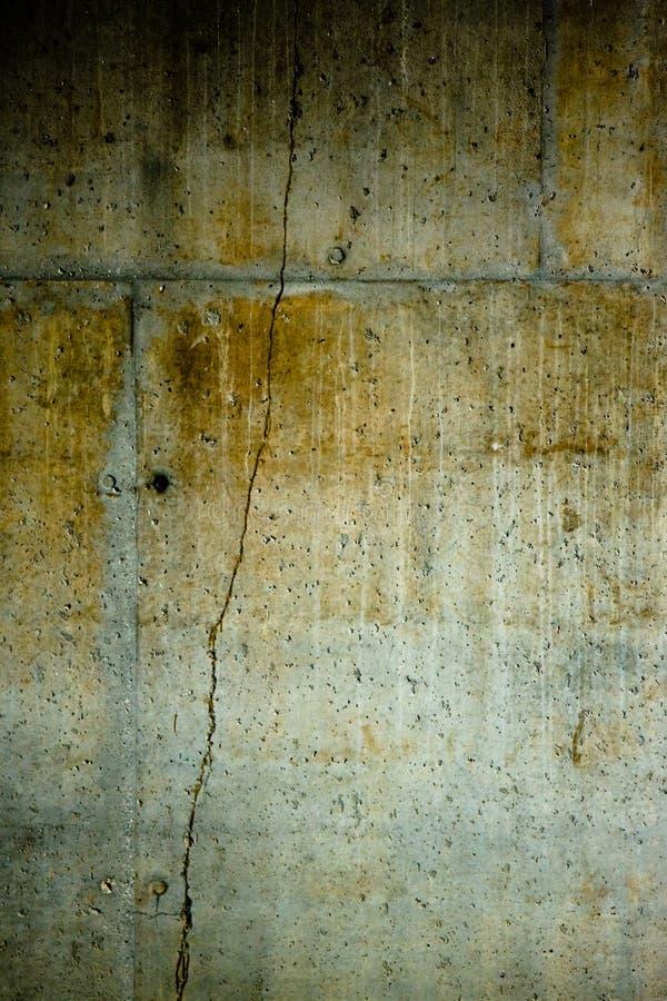 текстура 54 стоковые фото