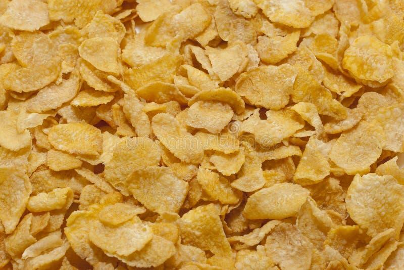 текстура cornflakes стоковые изображения