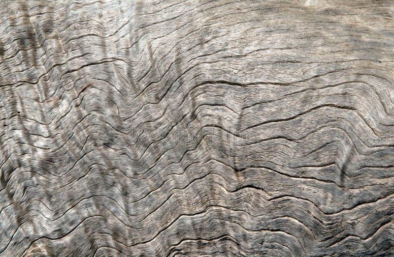 текстура driftwood предпосылки стоковая фотография rf
