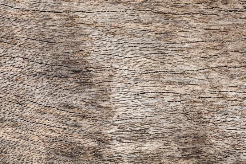 Текстура Driftwood стоковые фотографии rf