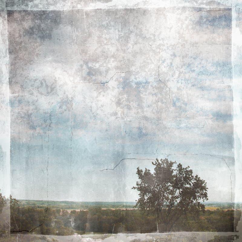 текстура grunge бумажная стоковые изображения