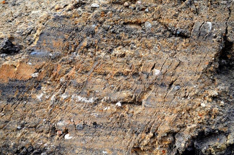 текстура sait глины здания положенная на полку землей стоковое изображение