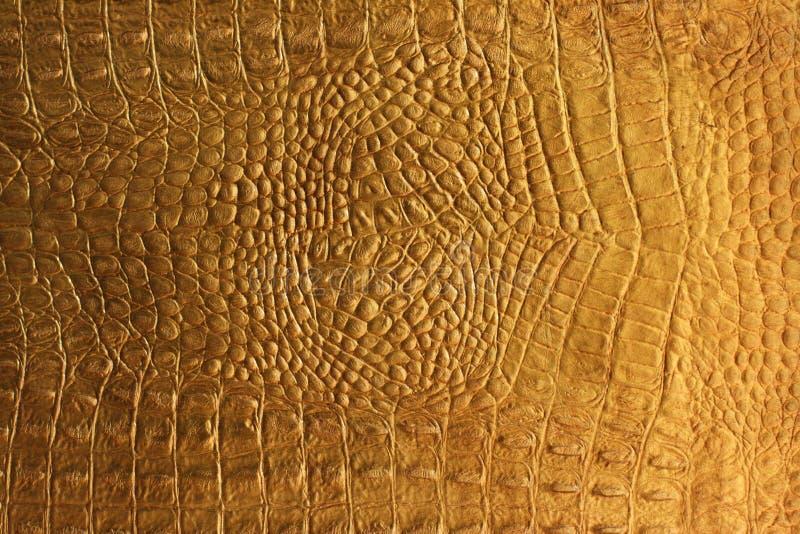 текстура snakeskin крокодила стоковое изображение rf