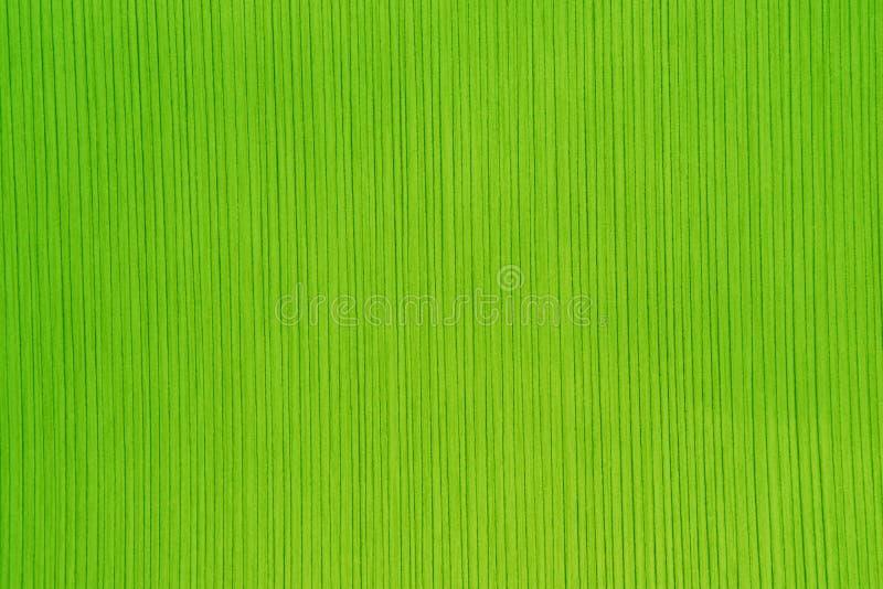 Текстура striped бумаги в ярком ом-зелен цвете стоковые изображения