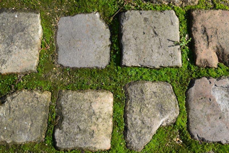 Текстурированный камень стоковое изображение rf