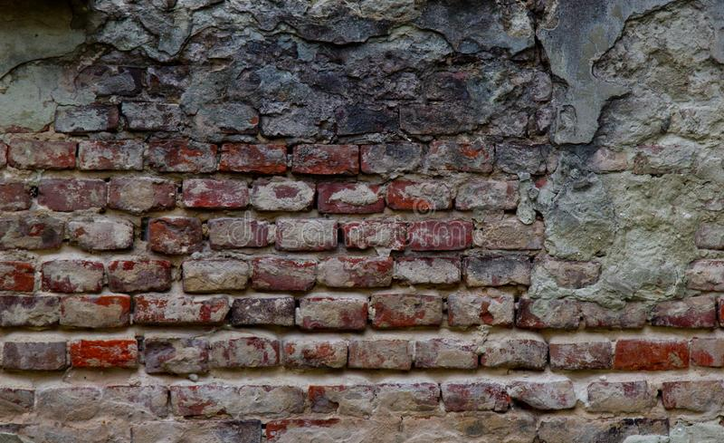 Текстурируйте очень старой слезая красной кирпичной стены покрытой с крупным планом гипсолита время ломая предпосылку стоковые изображения