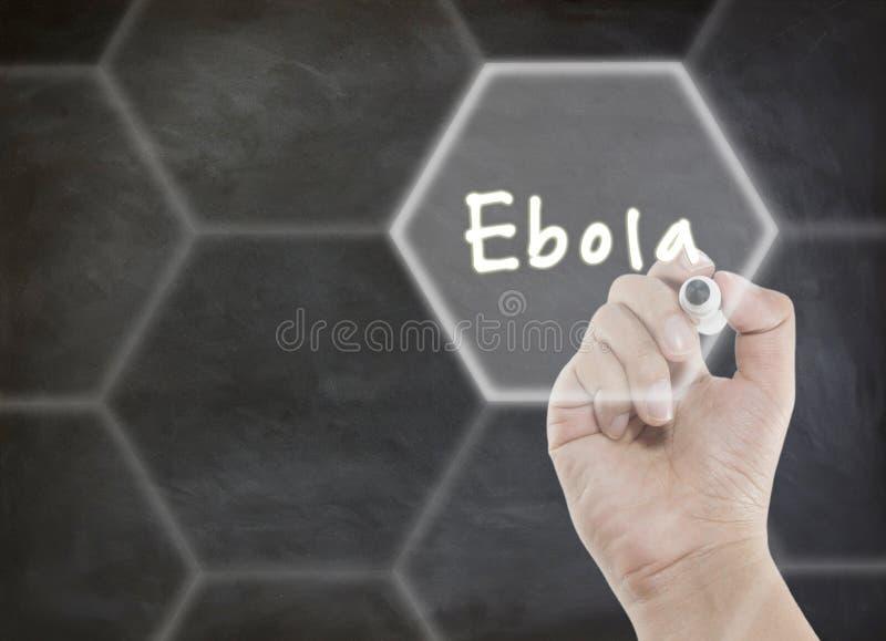 Текст Ebola стоковые изображения rf