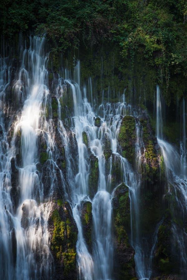 Текущая вода долгой выдержки падений Burney в McArthur-Burney падает мемориальный парк штата, Калифорния стоковое фото