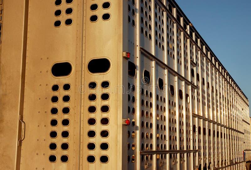тележка трейлера поголовья стоковая фотография rf