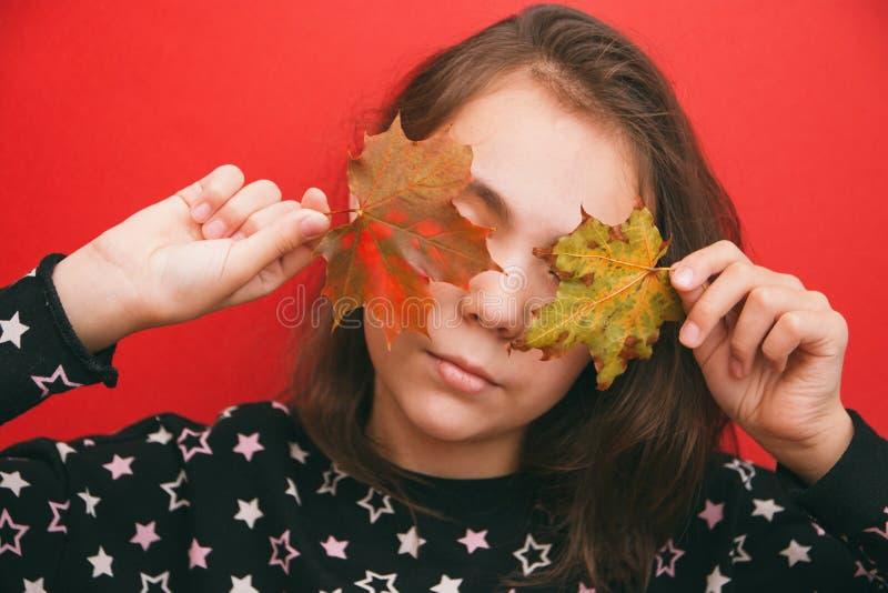 Тема осени, девушка покрывает ее глаза с малыми кленовыми листами на красной предпосылке стоковое фото rf