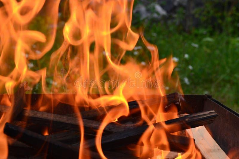 Тема сильная но спокойная, утихомиривающ и дающ жизнь к огню стоковые фото