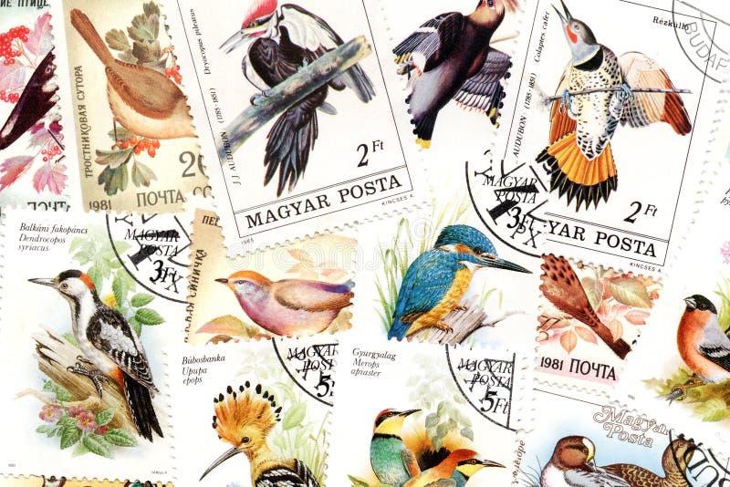 тема штемпелей почтоваи оплата птиц стоковая фотография rf