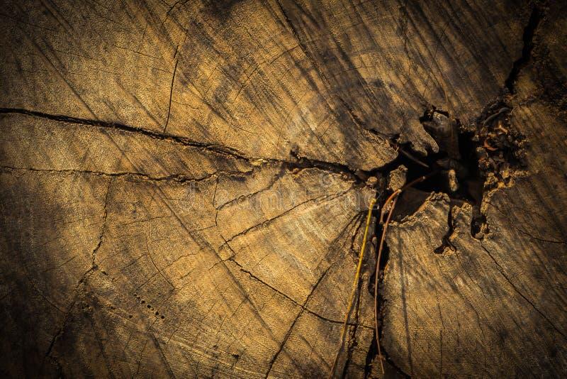 Темная деревянная поверхность предпосылки текстуры с старой естественной картиной стоковые фото
