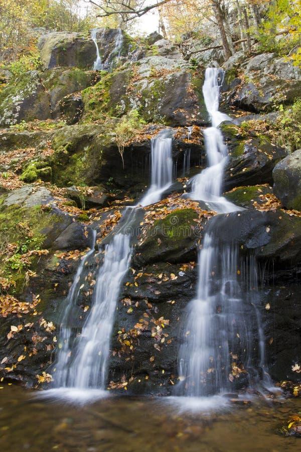 Темная полость падает в национальный парк Shenandoah стоковое фото