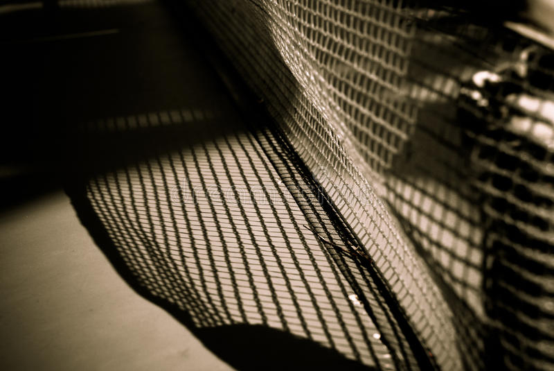 темная сеть иллюстрации мухы стоковая фотография