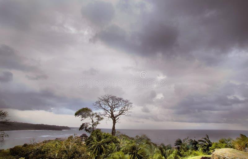 темное небо ландшафта стоковые фотографии rf