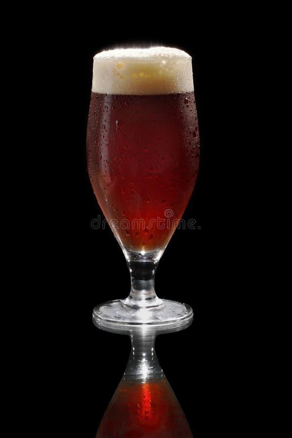 темнота пива стоковые изображения rf