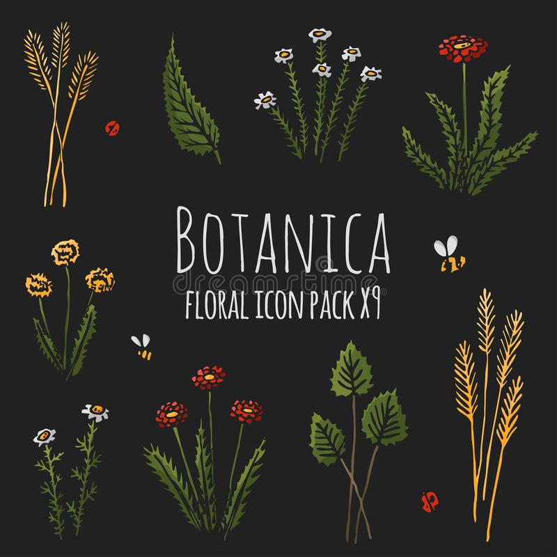 Темнота Botanica флористическая - стилизованные 9 заводов покрашенных деталями значка установленных состоя из, цветки и насекомые бесплатная иллюстрация