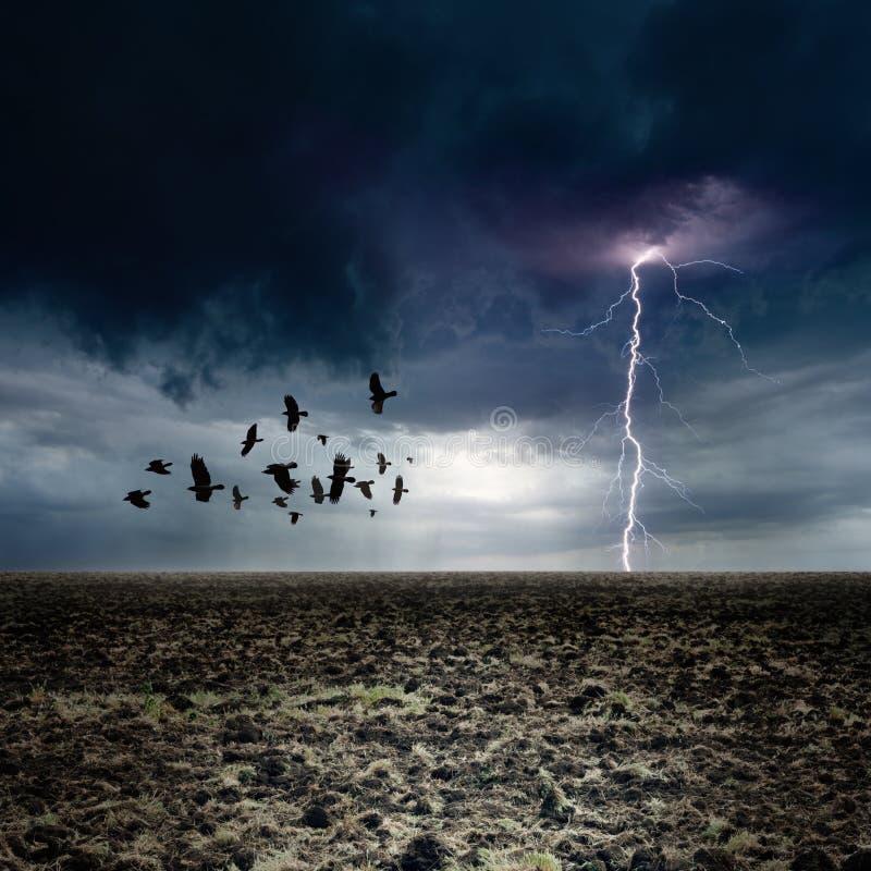 Темный ландшафт стоковые фотографии rf
