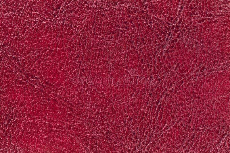 Темный - красная кожаная предпосылка текстуры, крупный план Рубиновый треснутый фон от кожи морщинки стоковые изображения rf
